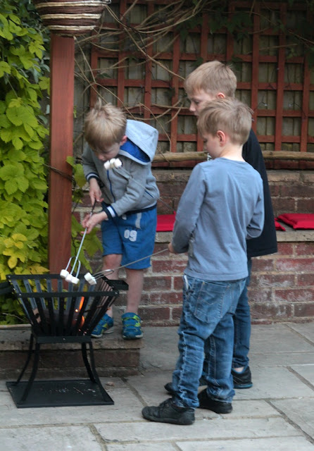toasting marshmallows in fire pit