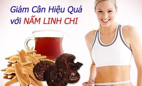 dùng nấm linh chi cho người thừa cân béo phì