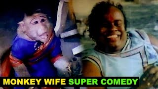 Senthil Comedy | Monkey Wife | Bhadil Solval Bhadrakali | Tamil Super Comedy Scenes