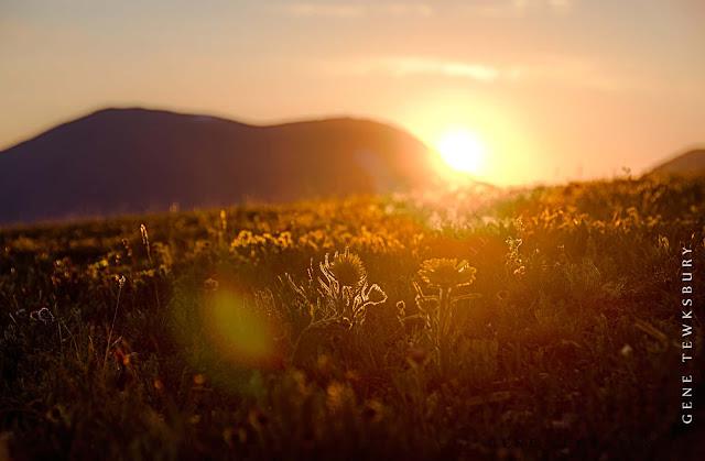 Sunrise-good-morning
