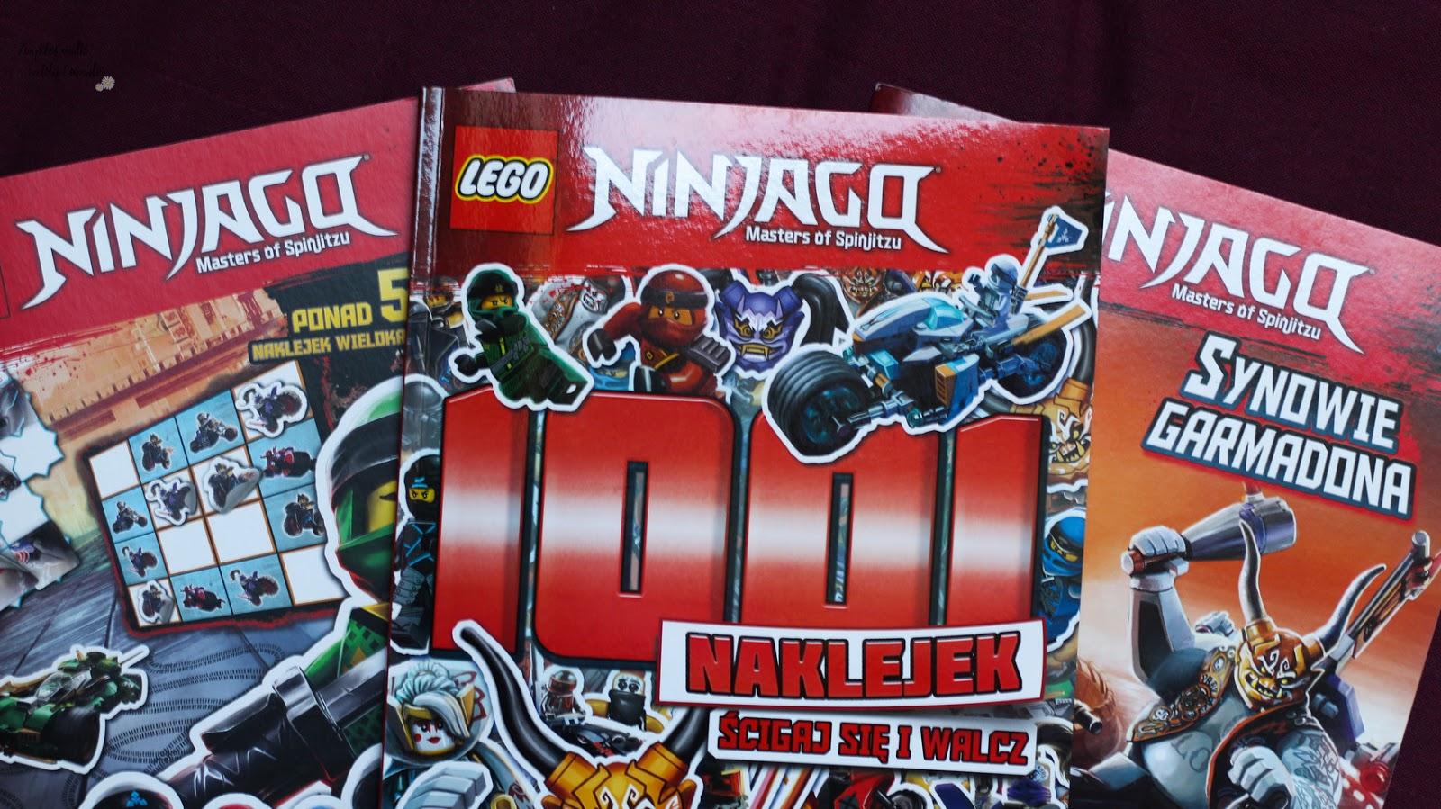 Lego Ninjago AMEET