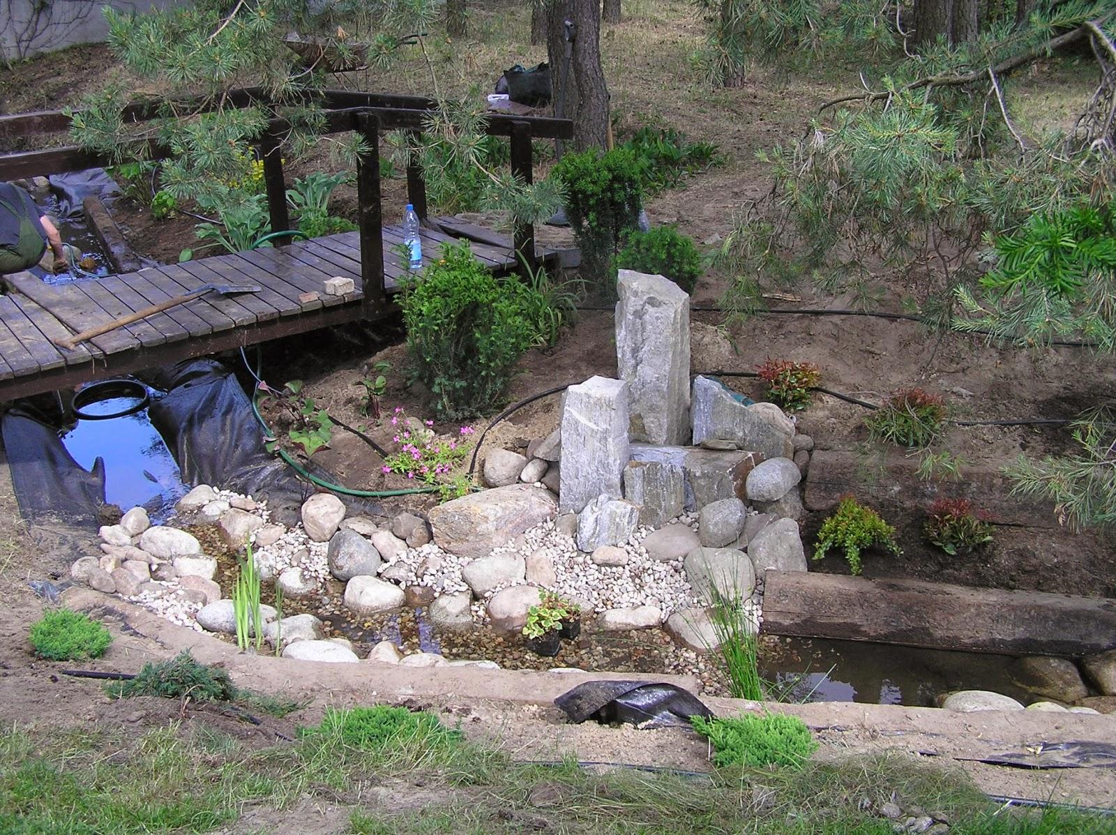 kamień w strumieniu