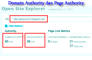 Arti Domain Authority Dan Page Authority