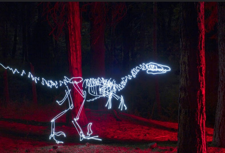 12-Velociraptor-Darren-Pearson-Dinosaurs-Palaeontology-Skeletons-and-Angels-in-Light-Paintings-www-designstack-co