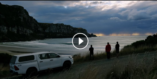 This Really Makes Us Want To Teleport To New Zealand