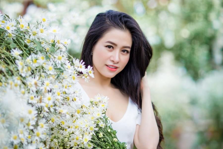 Hoa hậu Lý Thiên Nương lạc vào rừng cúc họa mi giữa lòng Hà Nội