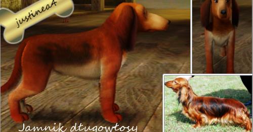 The Sims 3 : Jamnik długowłosy