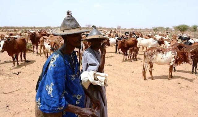 Ataque étnico en aldea de Mali, deja 115 muertos