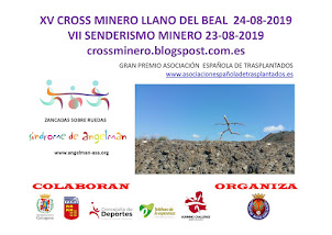 CARTEL XV CROSS MINERO