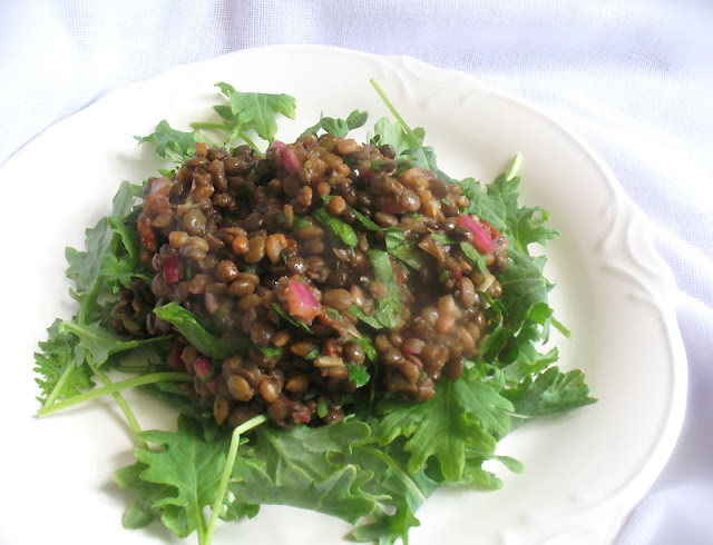 Lentil salad with rye berries