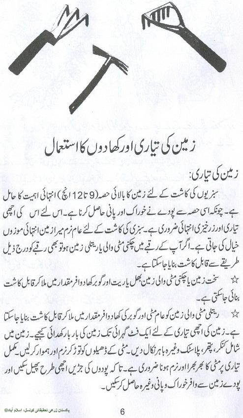 how to grow vegetables fruits kitchen gardening urdu guide rh noonwalqalam blogspot com Teaching Garden Teaching Garden