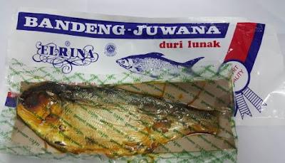 Bandeng Juwana-Elrina