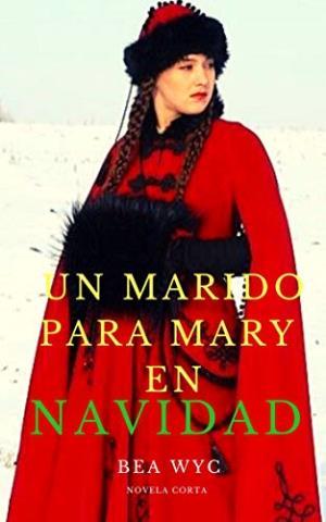 Un marido para Mary en navidad