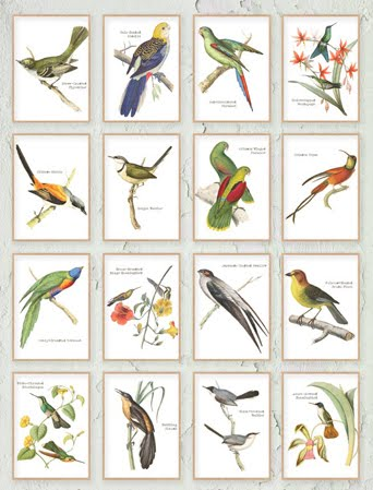 Our current reader favorite? Vintage Bird Printables
