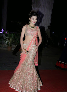 Urvashi Rautela in Saree