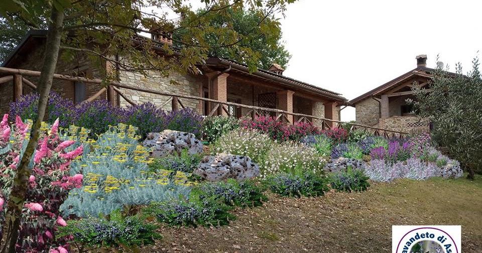 Progetto piccoli giardini aiuole for Piccoli giardini ornamentali