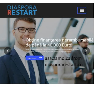 screenshot of Diaspora Restart site with attribution