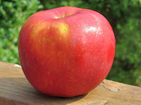 Mahana Red apple