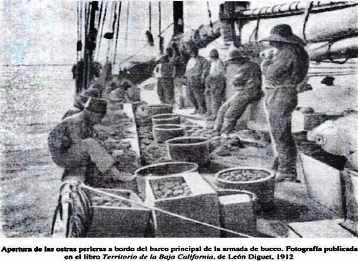 ChoyeroBCS: Historia de la explotación de la perla en Baja California Sur