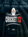 cricket_2013_ea_sports