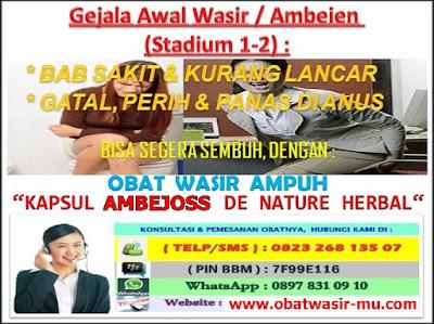 Jual Kapsul Ambejoss Obat Wasir Di Pekanbaru (Telp/SMS) 081914906800 _ Gejala Wasir / Ambeien Stadium 1 - 2