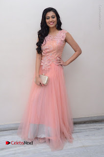 Actress Neha Hinge Stills in Pink Long Dress at Srivalli Teaser Launch  0155.JPG