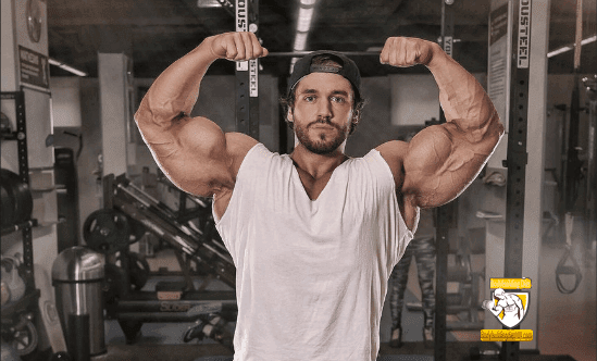 Best Bicep Workout for Size and Mass