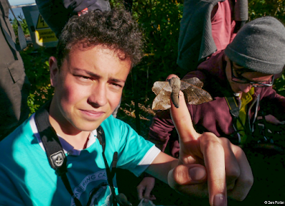Young birders at Landguard Bird Observatory by Ben Porter