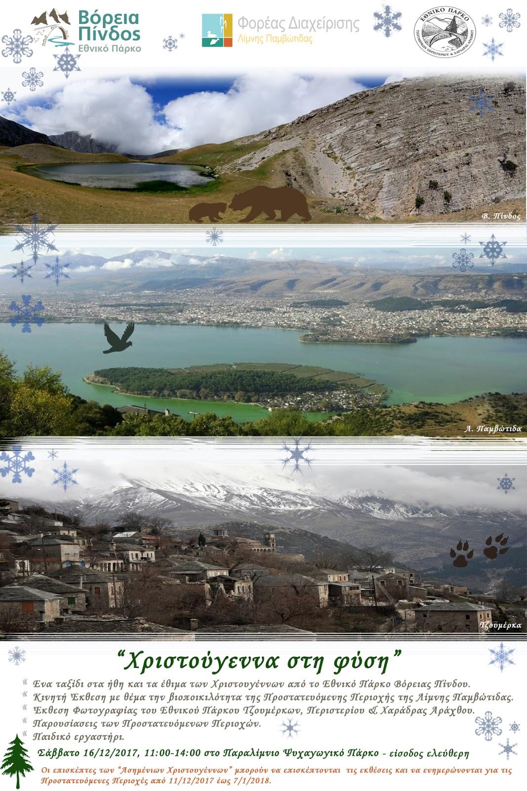 «Χριστούγεννα στην φύση από τους Φορείς Διαχείρισης Βόρειας Πίνδου, Παμβώτιδας και Τζουμέρκων»