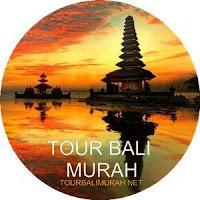 Paket tour murah ubud besakih Bali