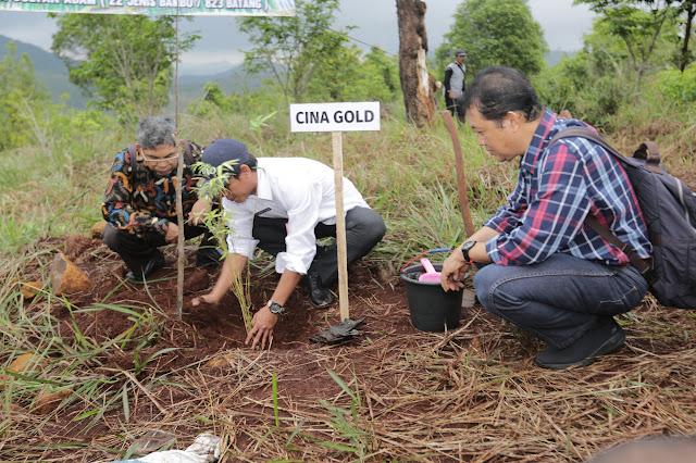 Dishut Kalsel Tanam 22 Jenis Bambu di Tahura Sultan Adam