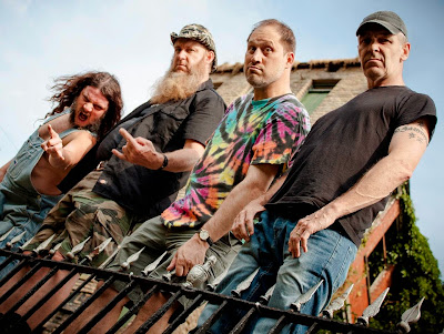 Hayseed Dixie new album Hair Down To My Grass