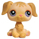 Littlest Pet Shop Tubes Retriever (#268) Pet