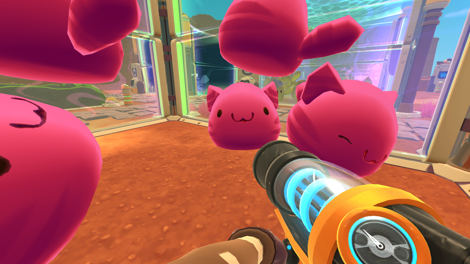 Pink tabby largo slimes