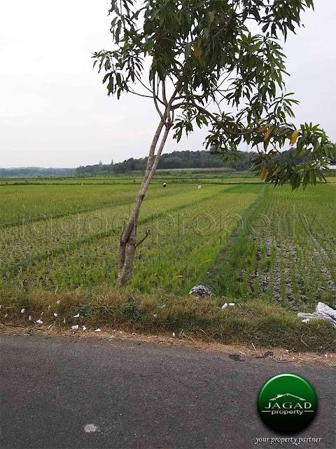 Tanah dekat The Sawah jalan Karangjati
