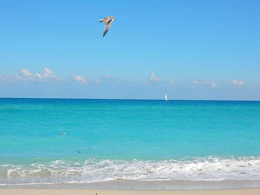 melhores praias miami