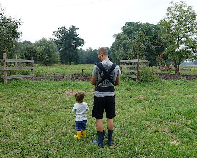 Die beste Babytrage | 6 Tragen im Vergleich | Tragebaby Test | judetta.de