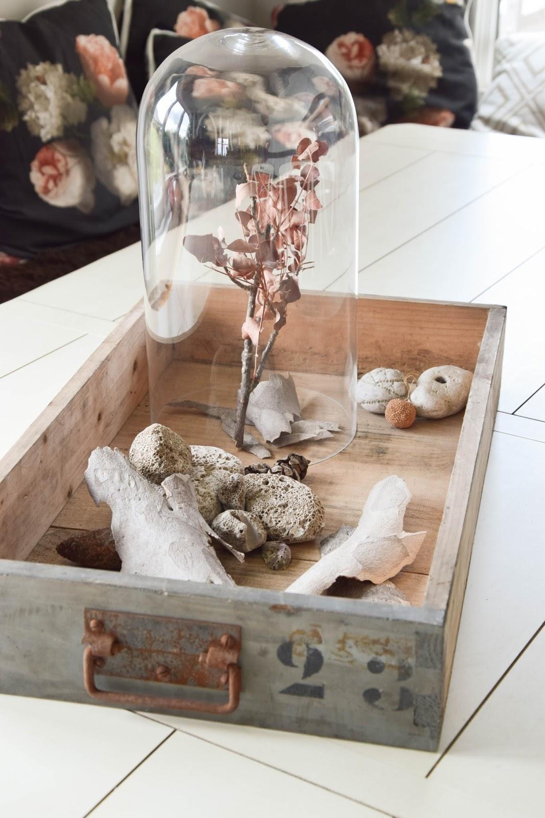Dekoidee mit Fundstücken aus dem Urlaub: Muscheln, Steine, Sand, Äste und mehr. Deko, Dekoration, Urlaubserinnerungen