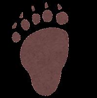 熊の足あとのイラスト