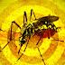 ALERTA: Ministério da Saúde confirma caso de febre amarela na Bahia