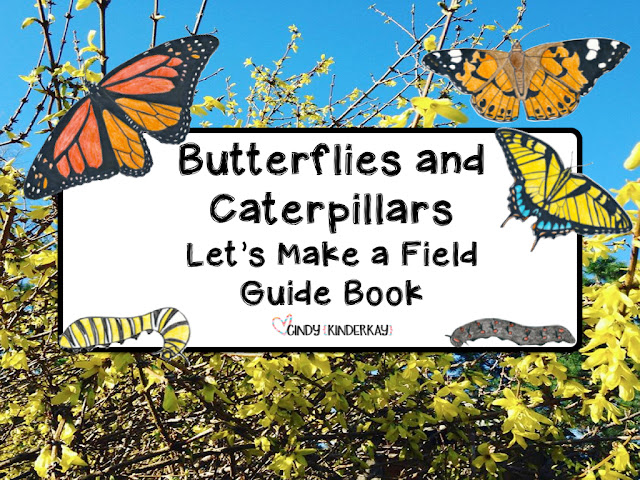 https://www.teacherspayteachers.com/Product/Butterflies-and-Caterpillars-Lets-Make-a-Field-Guide-Book-Science-Packet-233543