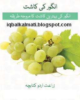 Angoor Ki Kasht Tariqa Urdu Booklet