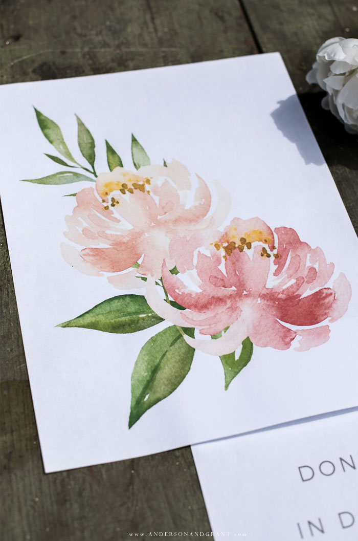 Peach and pink peony print