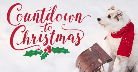 Its a Wonderful Movie - Your Guide to Family and Christmas Movies on TV: HALLMARK Announces 40 ...