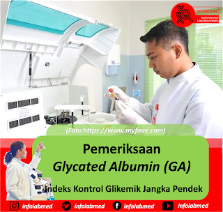 glycated albumin adalah, glycated albumin pdf, glycated albumin prodia, glycated albumin test, glycated albumin wikipedia, glycated albumin elisa, glycated albumin measurement, glycated albumin vs hba1c, glycated albumin clinical usefulness, glycated albumin pregnancy, glycated albumin normal range, glycated albumin in diabetes, glycated albumin test kit, glycated albumin a potential biomarker in diabetes, glycated albumin vs fructosamine,