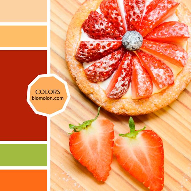 variedad_en_color_moodboard_78