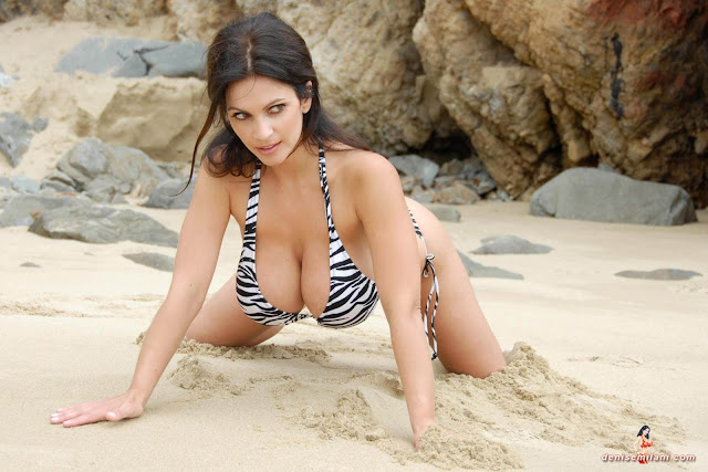 Denise Milani Beach Zebra HD Sexy Photoshoot Hot Photo 4