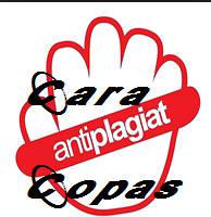 Etika Copy Paste (COPAS) Artikel Yang Baik dan Benar