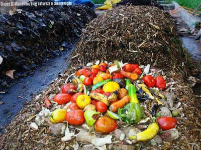 Compostagem, Como fazer compostagem, manual de compostagem, MMA, resíduos orgânicos, compostagem de resíduos, como fazer adubo orgânico, apostila de compostagem, cartilha de compostagem, composto orgânico, resíduos, gestão de resíduos sólidos, natureza, proteção do meio ambiente, o que fazer com os resíduos sólidos, como tratar resíduos sólidos