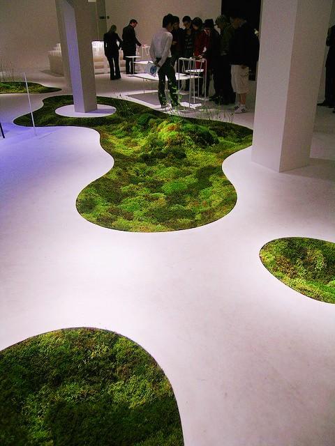 Ewa in the Garden: Green design solutions - moss carpets